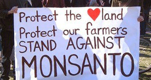 India Sells out to Monsanto, GMOs & the 'Bigger Picture'