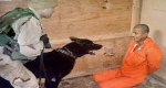U.S. breaks its own law by failing to prosecute torture