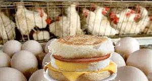 EggMc