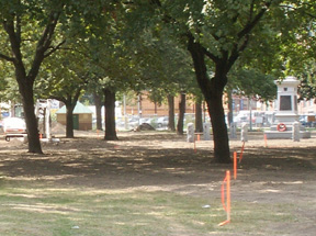 The Niagara neighbourhood residents' efforts to improve the local greenspace continue to bear fruit.